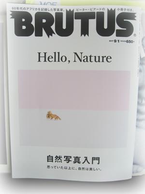 Brutus1709